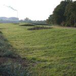 Westerplatte zagospodarowanie terenu październik 2015