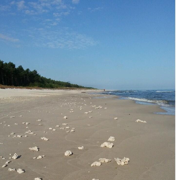 Parafina na plaży w Lubiatowie