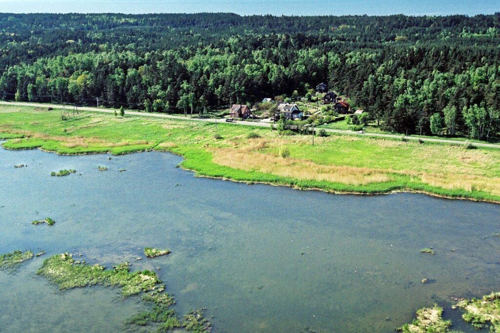 Zdjęcie z lotu ptaka zrobione nad wodami Zalewu Wiślanego, ukazujące szuwar, drogę, zabudowania oraz lasy Mierzei Wiślanej.