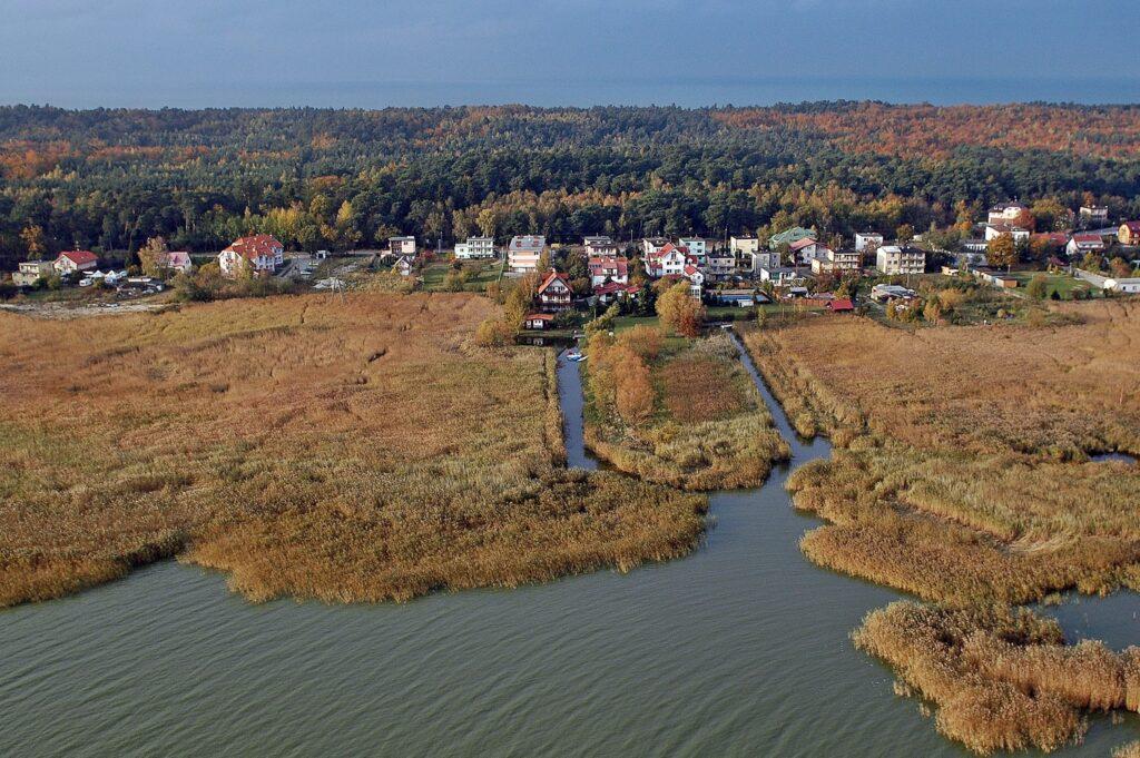 Zdjęcie z lotu ptaka ukazujące potężny szuwar oraz zabudowania na brzegu Zalewu Wiślanego na Mierzei Wiślanej.